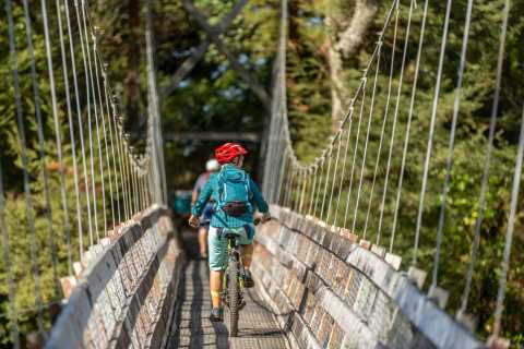 Turangi: Mountain Biking Trip on Tongariro River Trail