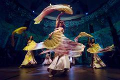 Ingresso para Dança Turca no Centro Cultural Hodjapasha