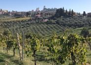 Von Livorno: Landausflug nach Chianti und San Gimignano
