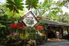 Singapura: Ingresso para o National Orchid Garden
