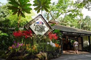 National Orchid Garden Singapur: Ticket