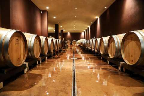 Lake Garda: Wine Tour and Tasting Experience in Bardolino