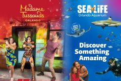 Orlando: Combo Madame Tussauds e Sea Life Aquarium