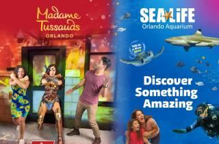 Orlando: Madame Tussauds und Sea Life Aquarium - Kombi-Tour