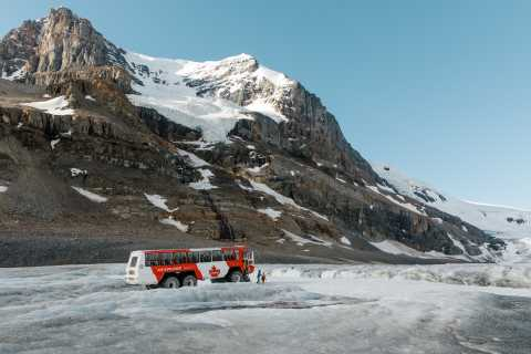 From Jasper: Columbia Icefield Half-Day Tour