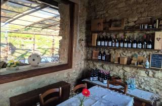 Ab Mailand: Weinberg- und Bio-Farmtour mit Verkostungen