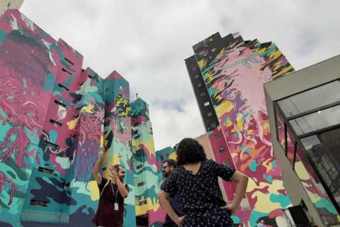 São Paulo: 2 Hour Off-the-Beaten-Path Graffiti Walking Tour