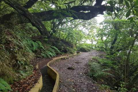 Madère: Levada Santo da Serra - Promenade privée Ribeiro Frio