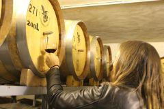 Amã: JR Desert Winery Tour com degustações e almoço