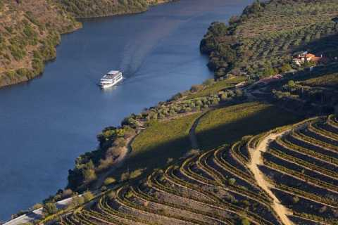 Pinhão and Douro Valley Day Cruise from Porto