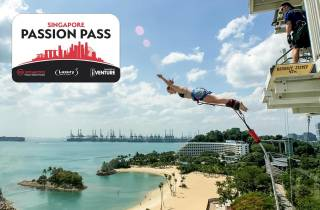 Singapur: Flexi Plus Premium-Pass