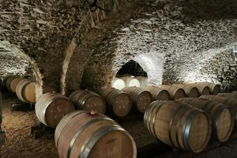 From Lyon: Day Trip to Beaujolais with Wine Tastings