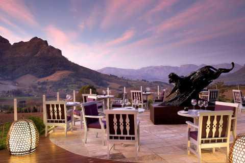 Van Kaapstad: Private Wine Tasting Day Tour