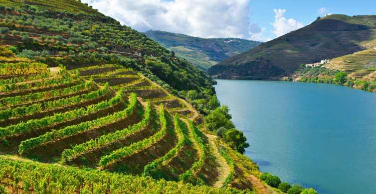 Ab Porto: Douro-Tal, Weinverkostung & Bootstour