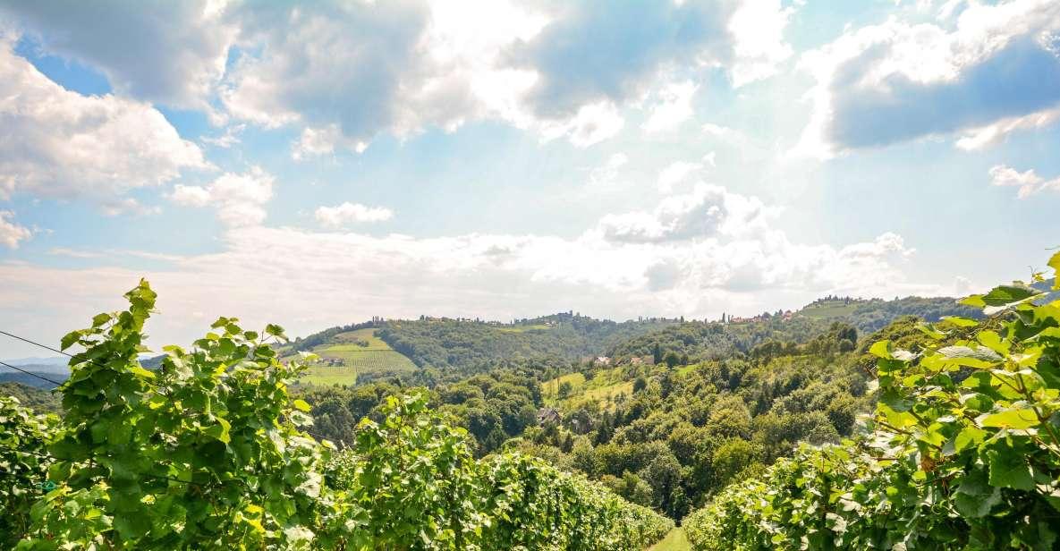 Porto: Excursão pelo Vale do Douro c/ Vinhos, Barco e Almoço