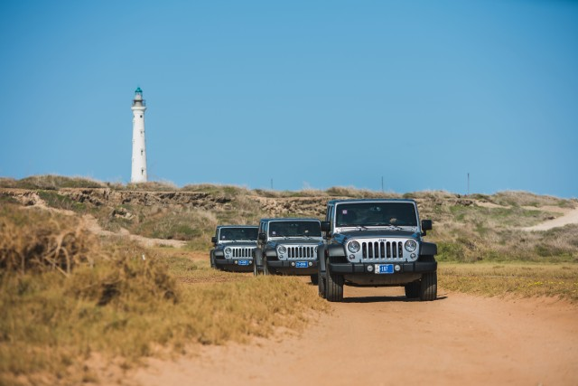 Palm Beach: Half-Day Guided Jeep Safari with Lunch