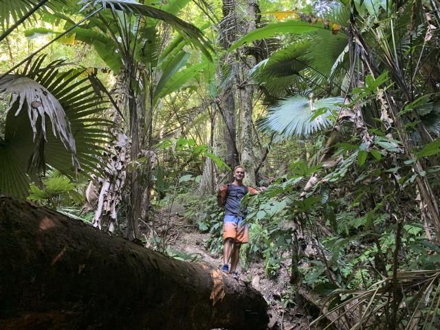 Phuket: Rainforest Hiking Adventure