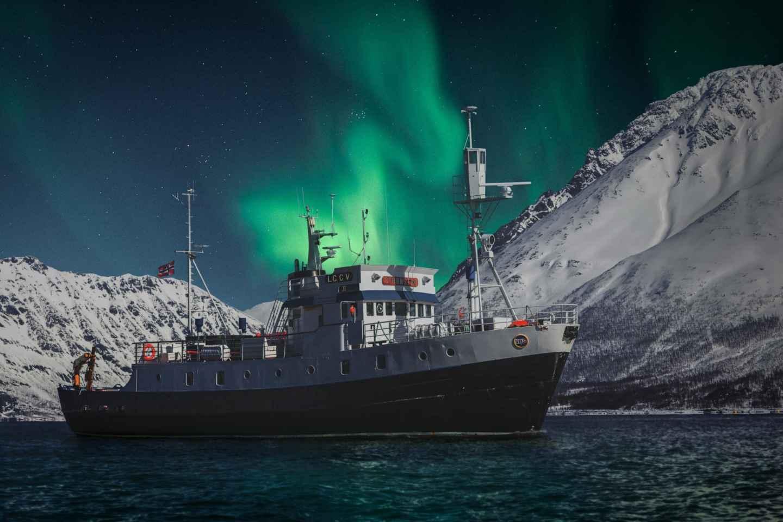 Tromsø: Nordlichter-Bootstour mit Jacuzzi
