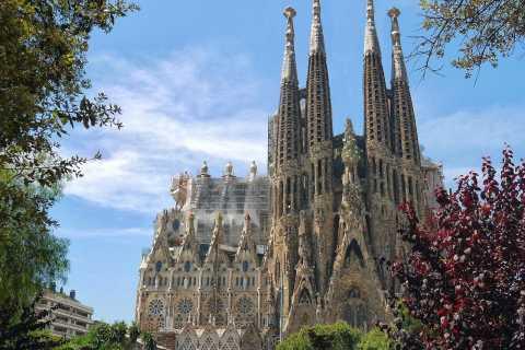 Barcellona: tour panoramico privato di mezza giornata con un locale