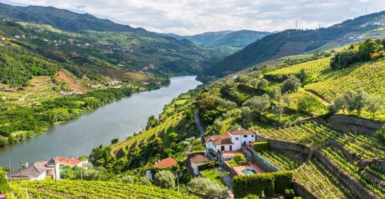 From Porto: Full-Day Douro Tour