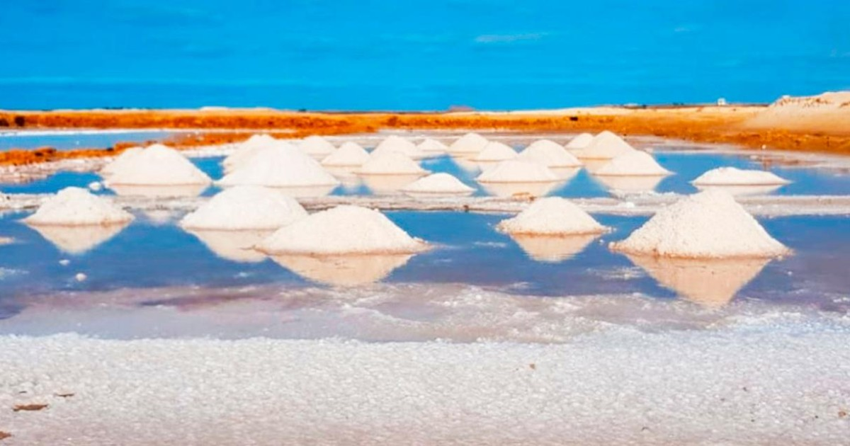 Sal Island: Guided Full-Day Highlights Tour with Lunch - Santa Maria, Cape Verde   GetYourGuide