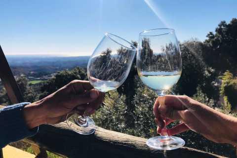 D'Albufeira: visite de dégustation de vin et visite de Silves