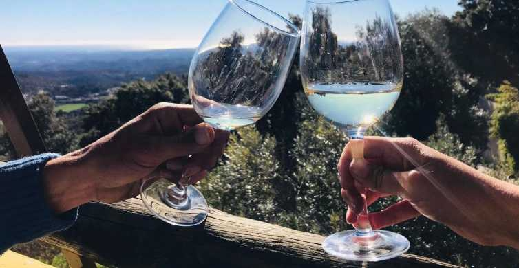 From Albufeira: Wine Tasting Tour and Silves Visit