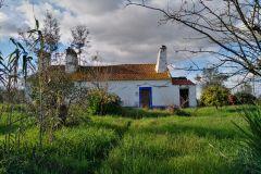 Évora: Floresta da Cortiça e Caminhada no Círculo de Pedra dos Almendres