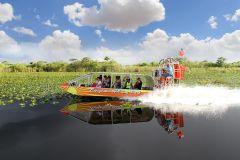 De Miami: Aerobarco e Show de Vida Selvagem nos Everglades