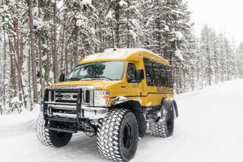 From Jackson: 4-Day Grand Teton and Yellowstone Winter Tour