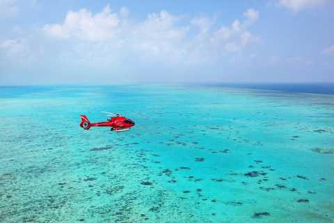 Port Douglas: Great Barrier Reef 30-Minute Scenic Flight