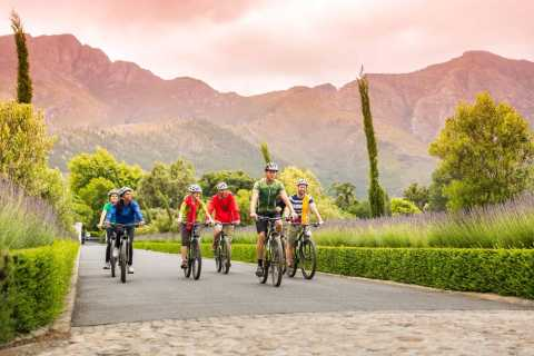 From Cape Town: Winelands Cycling Tour