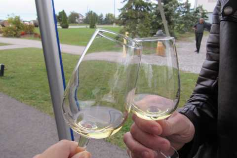 Toronto: Taste of Niagara-on-the-Lake Day Trip