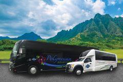 Oahu: Pearl Harbor, USS Arizona e City Highlights Tour