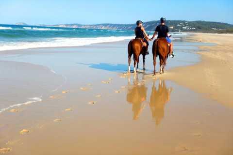 Rainbow Beach: Horse Riding