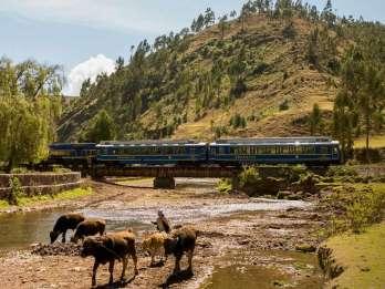 Von Ollantaytambo: Aguas Calientes Hin- und Rückfahrt