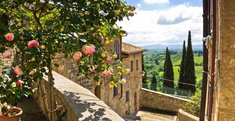 从佛罗伦萨出发:托斯卡纳一日游,可选午餐和葡萄酒
