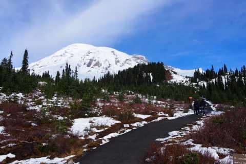 From Seattle: Mount Rainier Full-Day Tour