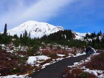 Ab Seattle: Ganztagestour zum Mount Rainier