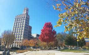Asheville: History and Architecture Tour
