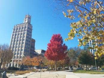Asheville: Geschichte und Architektur Tour