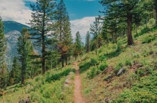 Ab Denver / Boulder: Wanderung Rocky-Mountain-Nationalpark