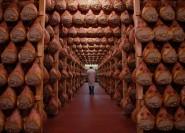 Bologna / Modena: Gastronomische Tour durch das Parma Food Valley