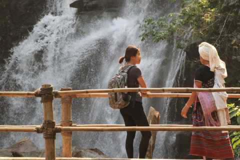 From Chiang Mai: Doi Inthanon National Park Hiking Tour