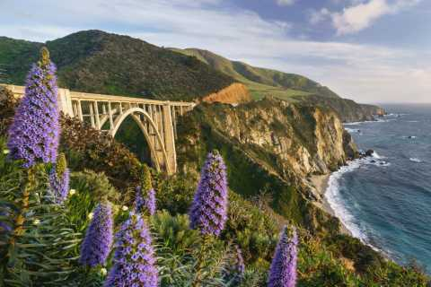Big Sur California: Pacific Coast Highway Self-Drive Tour