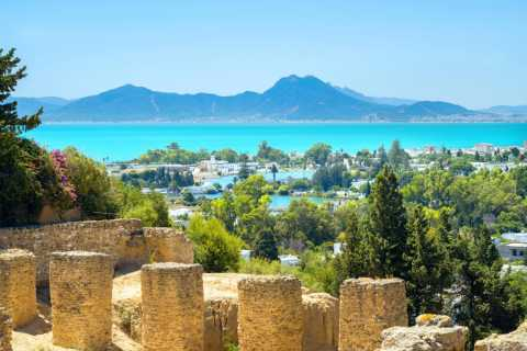 Tunis: Full-Day Local Towns Sightseeing Tour with Lunch