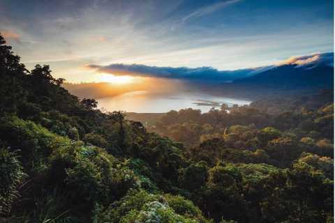 Bali: Twin Lakes, Handara Gates, and Forest Trekking Tour