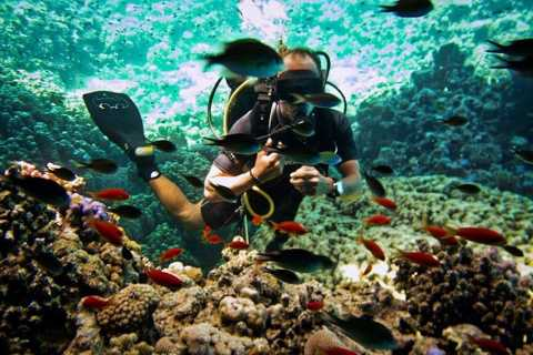 Ras Muhammad National Park: Diving Boat Trip from Sharm