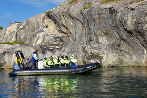 Bodø: Saltstraumen RIB Safari