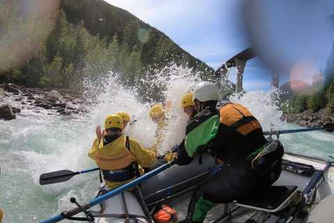 Kicking Horse River: 3-Hour Class 2-4 Rafting Trip
